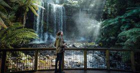 One of many Tasmanian waterfalls